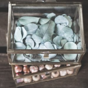 Glasbox Gold Merigold Vistienkarten