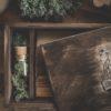 Holzboxen für Fotografen Rentier Moos
