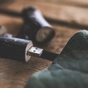 Holzboxen für Fotografen USB-Stick: Branch